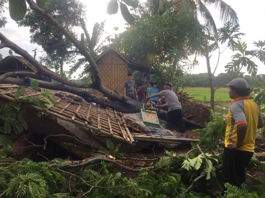 Rumah rusak tertimpa pohon di Desa Benda, Sukamulya, Kabupaten Tangerang.